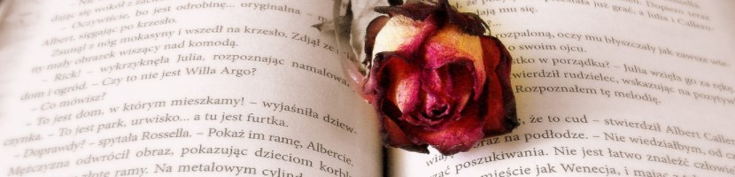 Book, rose, Valentine's Day gift
